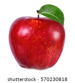 apple isolated on white... | Shutterstock . vector #570230818