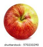 apple isolated on white... | Shutterstock . vector #570233290