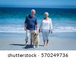 Stock photo cute mature couple holding hands walking the dog on the beach 570249736
