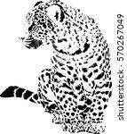 black and white vector sketch...   Shutterstock .eps vector #570267049