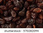 raisin   Shutterstock . vector #570282094