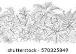 hand drawn branches and leaves... | Shutterstock .eps vector #570325849