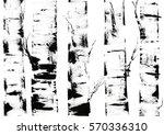 Background Of Birches. Hand...
