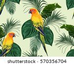 beautiful seamless vector... | Shutterstock .eps vector #570356704