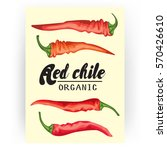 cartoon chile pepper card. ripe ... | Shutterstock .eps vector #570426610
