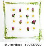 frame with field flowers  such... | Shutterstock . vector #570437020