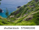 Norfolk Island With Norfolk...