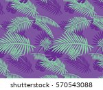 tropical summer purple and... | Shutterstock .eps vector #570543088