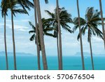landscape in thailand  palms... | Shutterstock . vector #570676504