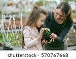 mother and daughter taking care ... | Shutterstock . vector #570767668