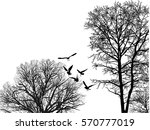 Illustration With Gulls And...