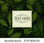 abstract exotic tropical leaf... | Shutterstock .eps vector #570785674