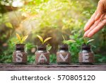 close up of hand nurturing and... | Shutterstock . vector #570805120