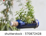 an image of a recycled bottle... | Shutterstock . vector #570872428