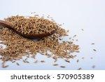 cumin seeds | Shutterstock . vector #570905389