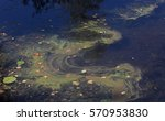 pollution on water surface | Shutterstock . vector #570953830