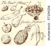 fruit doodles | Shutterstock .eps vector #57104206