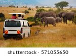 tourists on game drive taking... | Shutterstock . vector #571055650