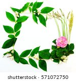 wreath with pink tea rose and... | Shutterstock . vector #571072750
