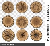 set of trees top view for... | Shutterstock .eps vector #571120978