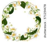 realistic jasmine flowers.... | Shutterstock .eps vector #571254478