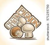 vector logo champignon... | Shutterstock .eps vector #571255750