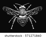 realistic sketch of insect  ... | Shutterstock .eps vector #571271860