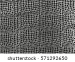 distressed overlay texture of... | Shutterstock .eps vector #571292650