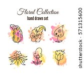 floral decorative set.... | Shutterstock . vector #571315600