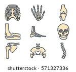 bones skeleton icon | Shutterstock .eps vector #571327336