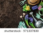 Stock photo gardening tools hyacinth flowers watering can and straw hat on soil background spring garden 571337830