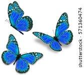 three blue monarch butterfly...   Shutterstock . vector #571360474