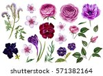 Violet Flowers Set. Botanical...