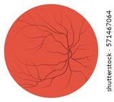 eye red veins. blood vessels... | Shutterstock .eps vector #571467064