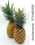 ripe pineapple | Shutterstock . vector #571481020