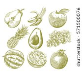 set of hand drawn fruits... | Shutterstock .eps vector #571500076