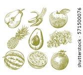 set of hand drawn fruits... | Shutterstock .eps vector #571500076