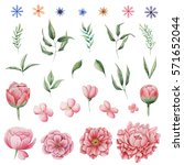 hand painted watercolor... | Shutterstock . vector #571652044