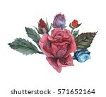 hand painted watercolor... | Shutterstock . vector #571652164