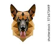symmetrical vector illustration ... | Shutterstock .eps vector #571673449