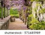 garden | Shutterstock . vector #571685989