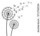 two beautiful stylized black... | Shutterstock .eps vector #571706524