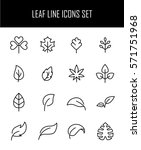 set of leaf icons in modern... | Shutterstock .eps vector #571751968
