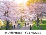 tokyo midtown  japan   april... | Shutterstock . vector #571752238