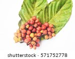 fresh coffee | Shutterstock . vector #571752778