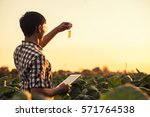 Farmer Researching Plant In...