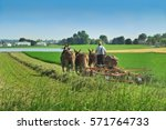 Amish Farmer Working In The...