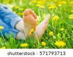 relaxing lying in a meadow in... | Shutterstock . vector #571793713
