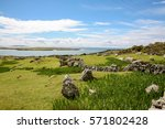 Sheep Grazing On The Coast Of...