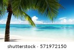 palm and beach | Shutterstock . vector #571972150